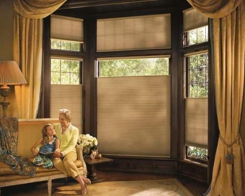 Duette® honeycomb shades with UltraGlide®