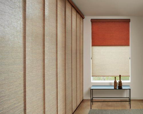 Designer Roller Shades + Skyline® Panels with Continuous Cord Loop